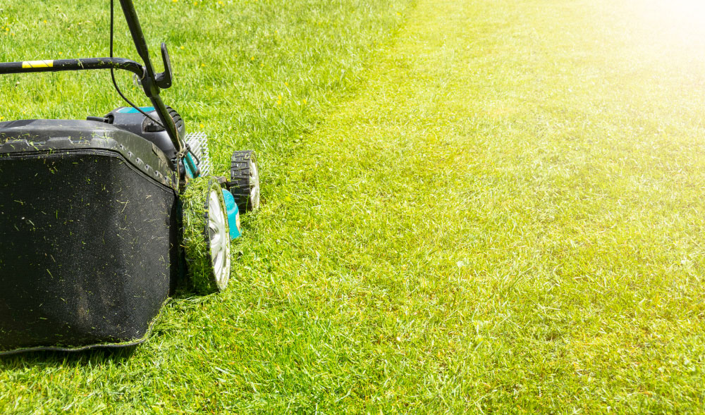 Lawn mower on green grass, sunny day