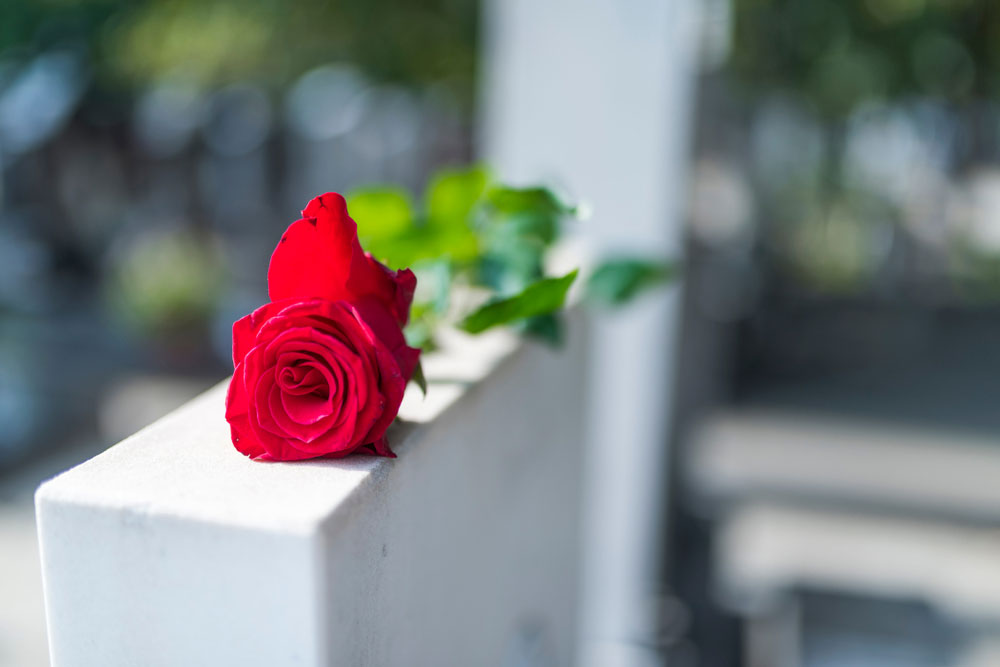 A rose placed on a tombstone.