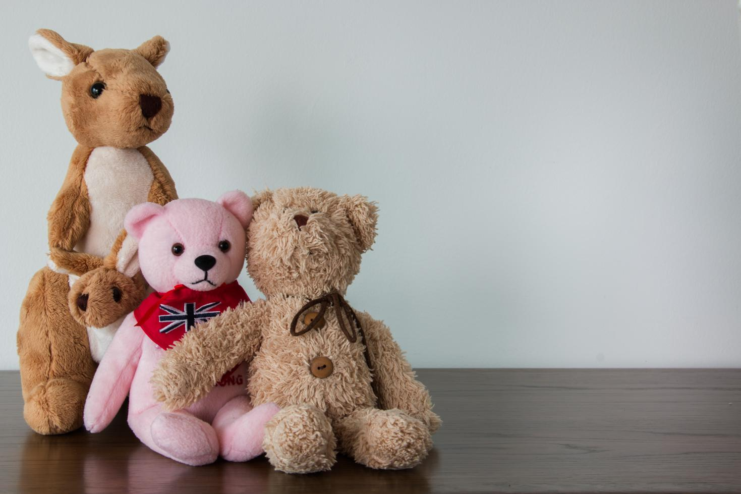 stuffed animals that used to be valuable stored at Affordable Family Storage