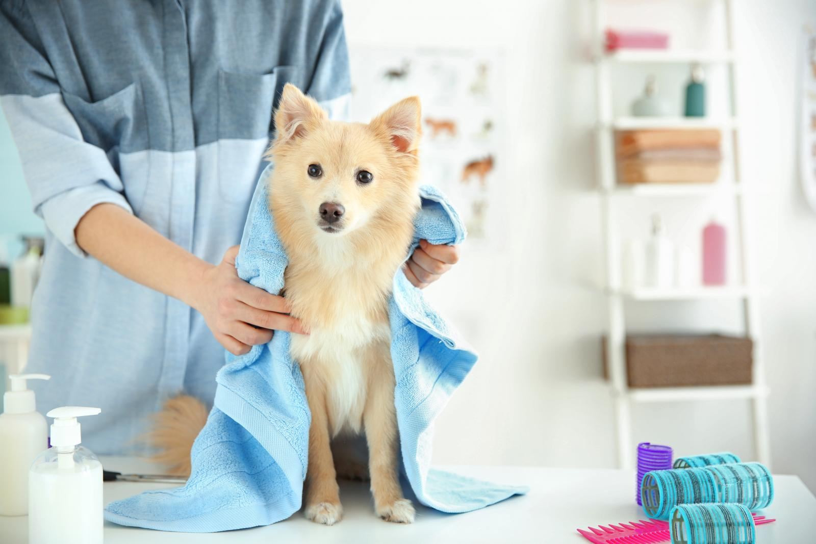Storage Unit for Pet Grooming