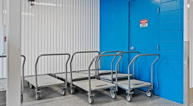 Beyond Self Storage at Temple Terrace Carts