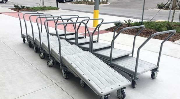 Customer Handcarts Are Plentiful