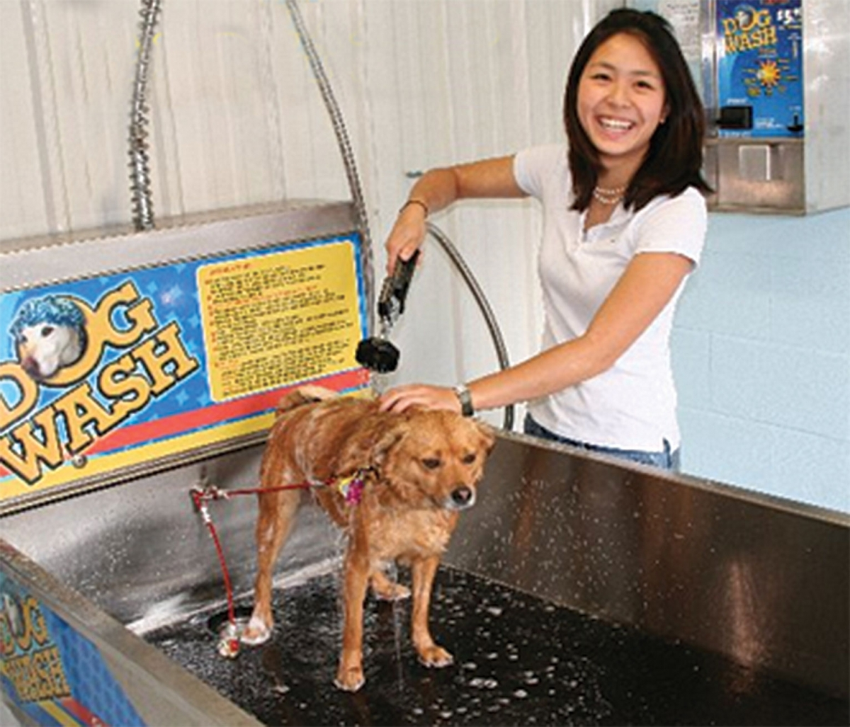 Come By And Check Out Our Bathing Area   Itu0027s Sure To Make Bathtime A  Success! Dog Wash