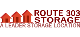 Leader Storage logo