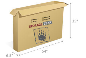 Flat Screen TV Box StorageBear