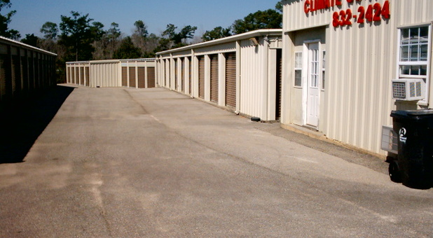 Self Storage Landscape