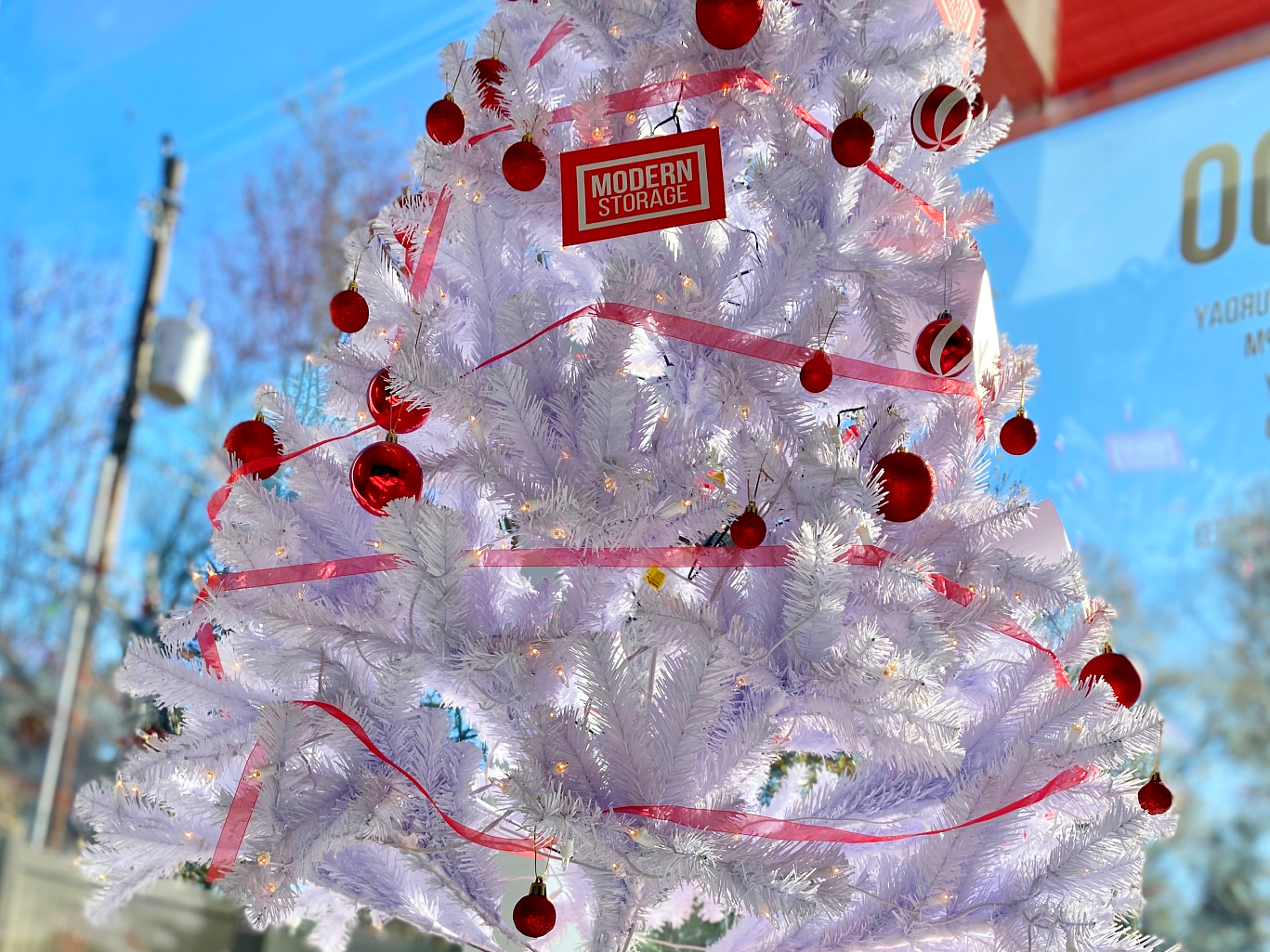 Photo of Modern Storage Christmas tree. Read on for holiday storage tips!